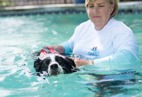 Swimming as Therapy